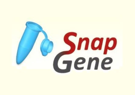 SnapGene Crack